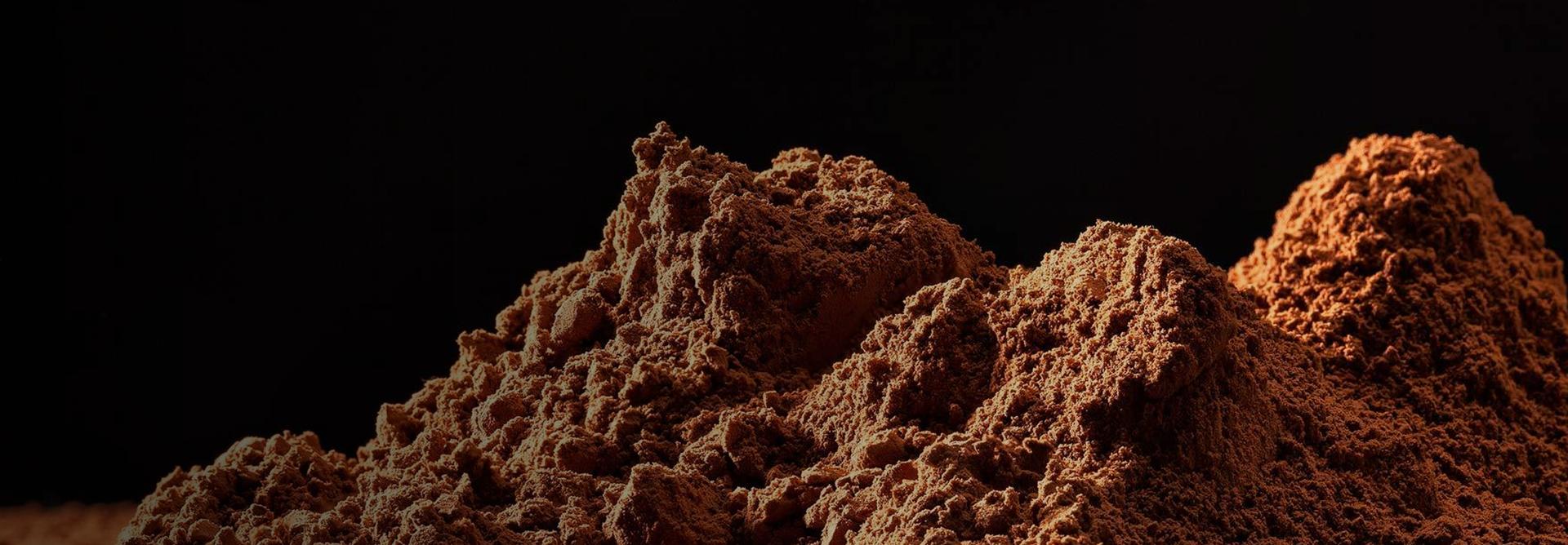 Loos Cacao B.V. - De specialist in cacao verwerking